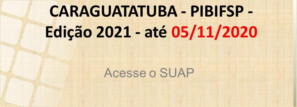 PIBIFSP 2021